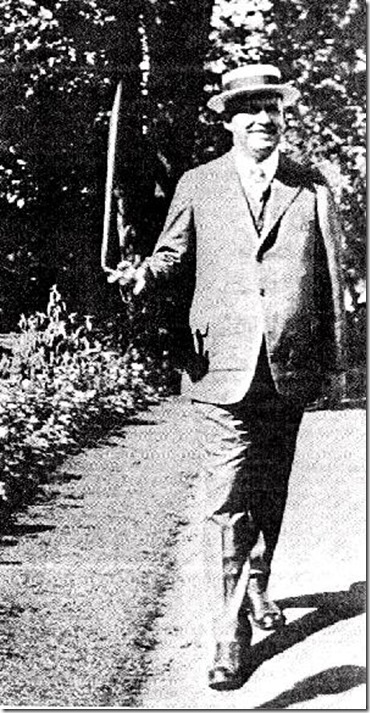 Wallace Stevens Walking