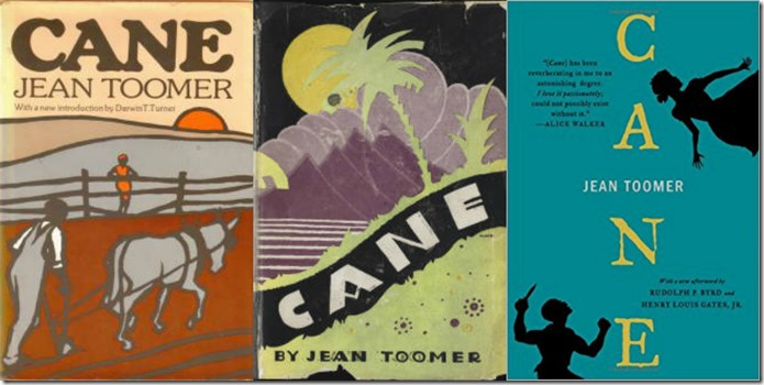 Book Covers of Cane