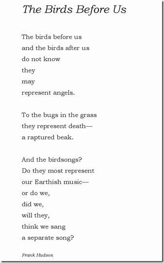 The Birds Before Us